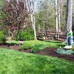 Chesterfield VA Lawn Care – Fertilization Program