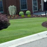 Lawn Care10_1293