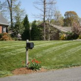 Mowing by Picture Perfect Lawn Maintenance Chesterfield VA (804) 530-2540