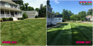 Picture Perfect Lawn Maintenance | 804-530-2540 | Before and After | fertilizer and mowing Chesterfield VA