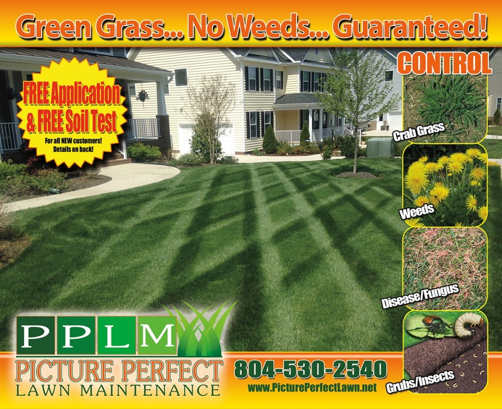 Chesterfield Lawn Maintenance | Picture Perfect Lawn Maintenance | Colonial Heights, VA 23834 | (804) 530-2540
