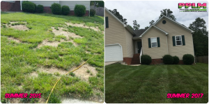 Picture Perfect Lawn Maintenance | 804-530-2540 | Before and After | corrective fertilizing high quality aeration seeding Richmond VA