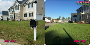 Picture Perfect Lawn Maintenance | 804-530-2540 | Before and After | healthy thick turf professional difference fertilizer Moseley VA