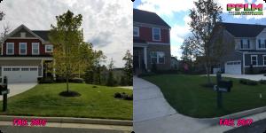 Lake Jordan VA Lawn Care Fertilization Weed Control by Picture Perfect Lawn Maintenance | (804) 530-2540