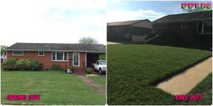 Picture Perfect Lawn Maintenance | 804-530-2540 | Before and After | high quality fertilization sustainable turf Chester VA