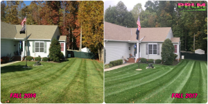 Picture Perfect Lawn Maintenance | 804-530-2540 | full service landscape care difference fertilizing mowing mulching pruning Chesterfield VA