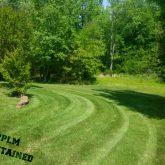 Picture Perfect Lawn Maintenance | 804-530-2540 | professional mowing fertilizing Chester VA