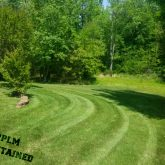 Picture Perfect Lawn Maintenance | 804-530-2540 | professional mowing fertilizing Chester VA