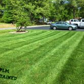 Picture Perfect Lawn Maintenance | 804-530-2540 | high quality grass cutting fertilizing organic Colonial Heights VA