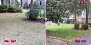 Picture Perfect Lawn Maintenance | 804-530-2540 | improved lawn quality aeration seeding one year difference Midlothian VA