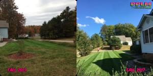 Picture Perfect Lawn Maintenance | 804-530-2540 | best lawn care company fertilizer mowing seeding Richmond VA