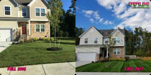 Picture Perfect Lawn Maintenance | 804-530-2540 | professional yard service fertilization mow prune Chesterfield VA