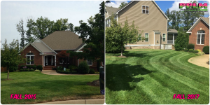 Picture Perfect Lawn Maintenance | 804-530-2540 | good looking lawn professional mowing Chesterfield VA