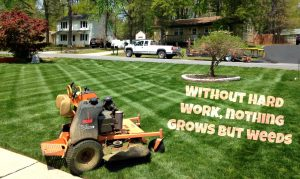 Hard work | Picture Perfect Lawn Maintenance