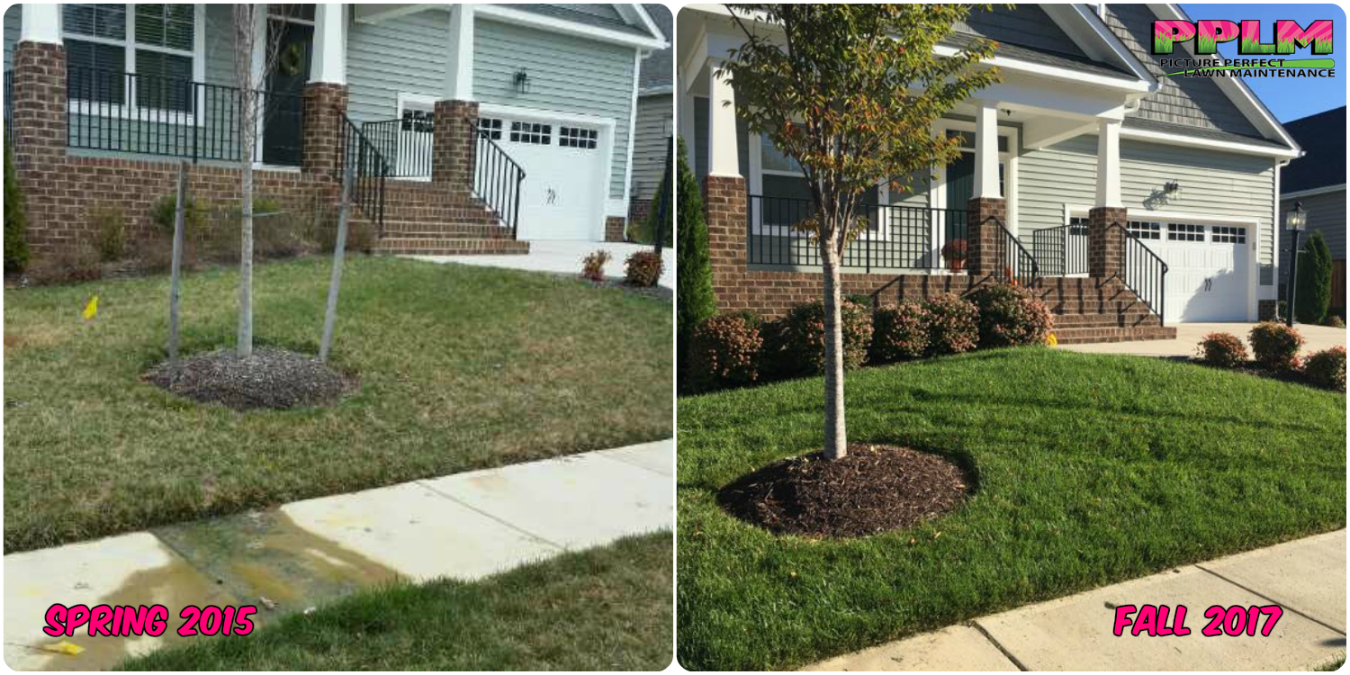 CALL FOR FREE ESTIMATE<br>1-804-530-2540