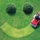 Hallsley Lawn Care Landscape Maintenance by Picture Perfect Lawn Maintenance | (804) 530-2540
