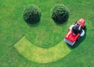 Fox Creek Lawn Aeration Seeding Fertilization | Picture Perfect Lawn Maintenance | (804) 530-2540