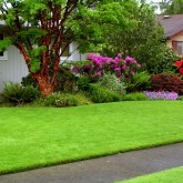 Chesterfield VA Landscaping | Picture Perfect Lawn Maintenance | (804) 530-2540