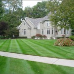 Chesterfield VA Lawn Care
