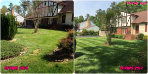 Picture Perfect Lawn Maintenance | 804-530-2540 | Before and After | best fertilizing company mowing service Colonial Heights VA