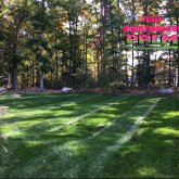 Picture Perfect Lawn Maintenance | 804-530-2540 | personalized lawn care full service fertilizer mowing Moseley VA