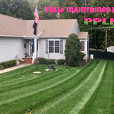 Picture Perfect Lawn Maintenance | 804-530-2540 | best fertilization mowing pruning mulching company Chesterfield VA