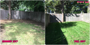 Picture Perfect Lawn Maintenance | 804-530-2540 | Before and After | best lawn care professional company organic fertilization aeration seeding Virginia Beach Norfolk
