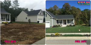 Picture Perfect Lawn Maintenance | 804-530-2540 | Before and After | quality fertilization aeration seeding service Chester VA