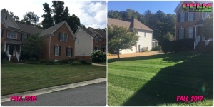 Picture Perfect Lawn Maintenance | 804-530-2540 | Before and After | grass improvement lawn care aeration seeding fertilization Virginia