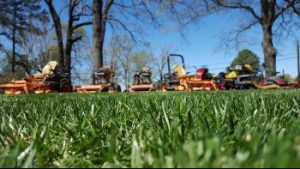 Bayhill Pointe Lawn Aeration Seeding Fertilization by Picture Perfect Lawn Maintenance | Chesterfield County | (804) 530-2540