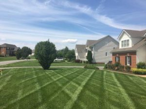 Harpers Mill Lawn Aeration Seeding Fertilization by Picture Perfect Lawn Maintenance | (804) 530-2540 | Quality Commercial and Residential Lawn Care