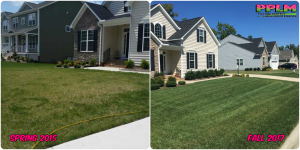 Picture Perfect Lawn Maintenance | 804-530-2540 | Before and After | full service lawn improvement fertilizer mowing Chesterfield VA
