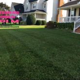 Picture Perfect Lawn Maintenance | 804-530-2540 | best yard service fertilizer mowing professional company Chesterfield VA