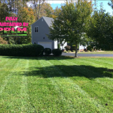Picture Perfect Lawn Maintenance | 804-530-2540 | best mowing pruning mulching fertilizer Midlothian VA