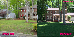 Picture Perfect Lawn Maintenance | 804-530-2540 | Before and After | good yard service fertilizer company Chesterfield VA