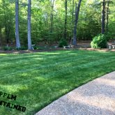 Picture Perfect Lawn Maintenance | 804-530-2540 | healthy lawn organic customized fertilizer program professional mowing Prince George VA