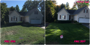 Picture Perfect Lawn Maintenance | 804-530-2540 | Before and After | best quality organic customized soil health fertilizer service Chesterfield VA