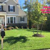 Picture Perfect Lawn Maintenance | 804-530-2540 | professional fertilization customizable organic service Chester VA