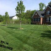 Picture Perfect Lawn Maintenance | 804-530-2540 | beautiful yard care fertilizer mowing Moseley VA