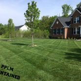 Picture Perfect Lawn Maintenance | 804-530-2540 | beautiful yard care fertilizer mowing Moseley VA