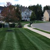 Picture Perfect Lawn Maintenance | 804-530-2540 | best landscape maintenance fertilization mowing stripes professional Richmond VA