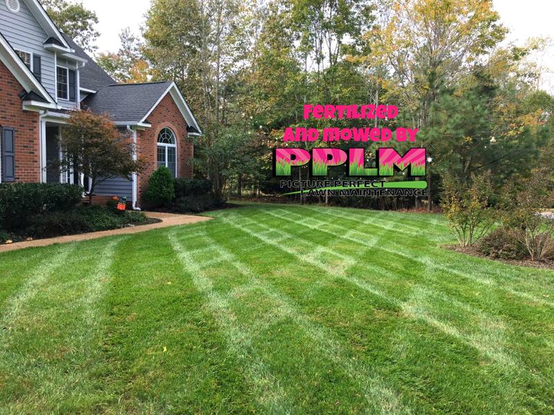 Broadmoor Park Lawn Care Aeration Seeding Fertilization | Picture Perfect Lawn Maintenance | (804) 530-2540