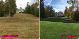 Picture Perfect Lawn Maintenance | 804-530-2540 | Before and After | full service lawn care solution green lawn healthy fertilizer aeration seeding Chesdin Landing Chesterfield VA