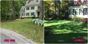 Picture Perfect Lawn Maintenance | 804-530-2540 | Before and After | grass rehab fescue yard fertilization aeration seeding success Chesterfield VA