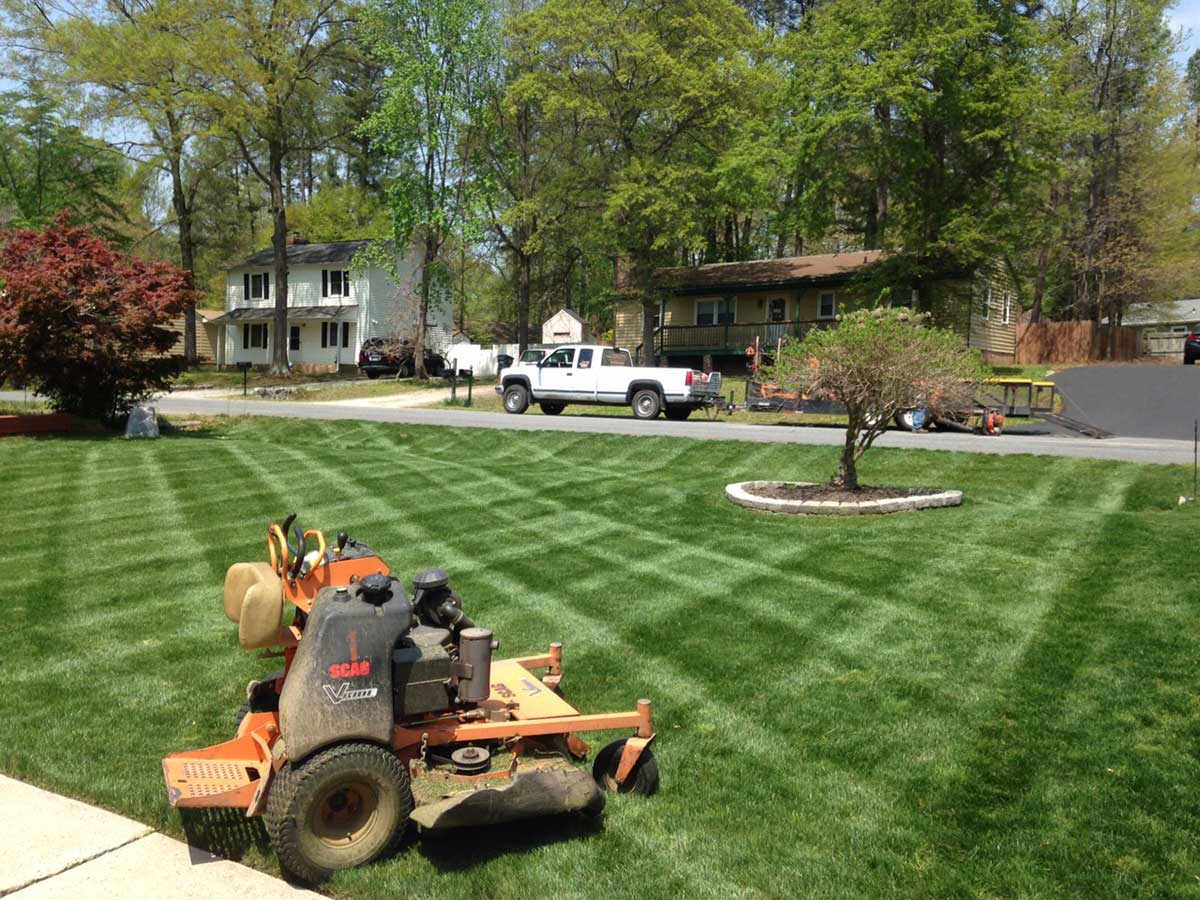 What's Next for Your Lawn | Lawn Care | Fertilization | Picture Perfect Lawn Maintenance | (804) 530-2540