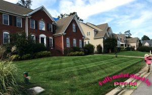 Hampton Park Lawn Care   Fertilization   PPLM   (804) 530-2540