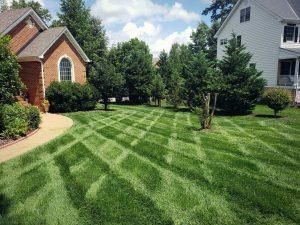 Moseley Va Lawn Care | Fertilization | PPLM | (804) 530-2540