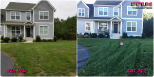 Picture Perfect Lawn Maintenance | 804-530-2540 | best fertilization aeration seeding service Chesterfield VA