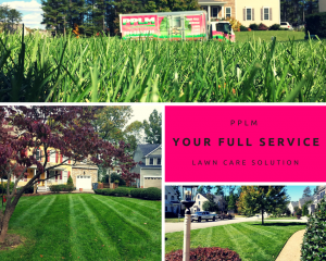 Picture Perfect Lawn Maintenance | 804-530-2540 | PPLM full service landscape care company collage Richmond VA