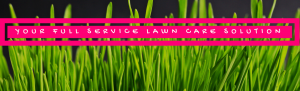 Picture Perfect Lawn Maintenance | 804-530-2540 | your full service lawn care solution Richmond VA